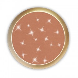 BLUSHING POWDER 58